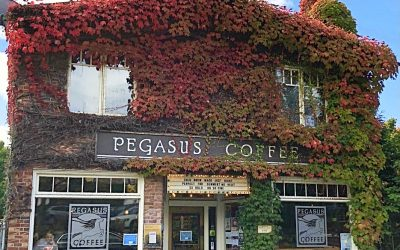Pegasus Coffee Company & Pegasus Coffee House Together Again